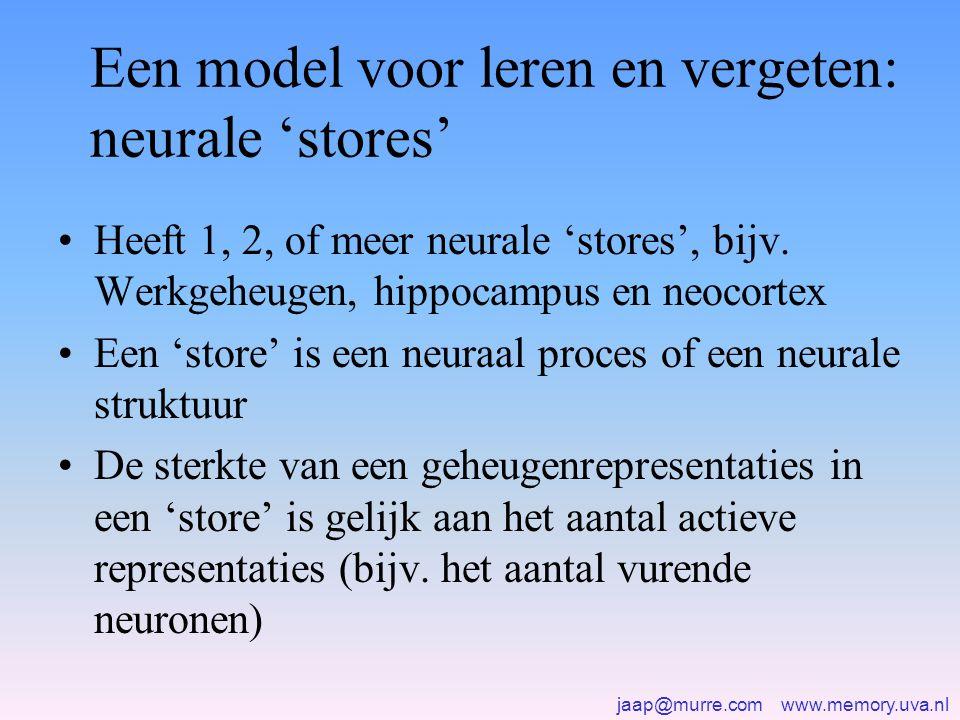 Een model voor leren en vergeten: neurale 'stores'