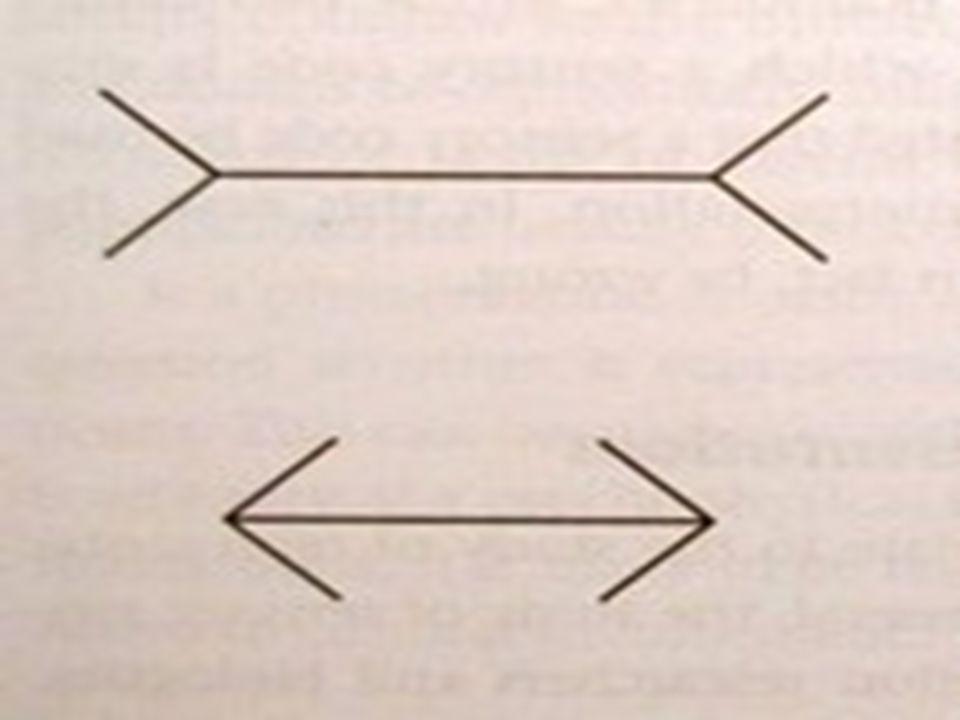 De lijntjes in onderstaand plaatje zijn even lang maar de ene lijkt langer door de dwarse streepjes.