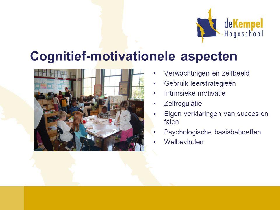 Cognitief-motivationele aspecten