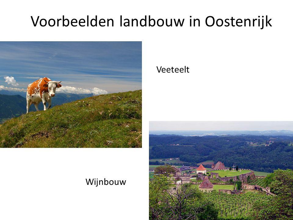 Voorbeelden landbouw in Oostenrijk