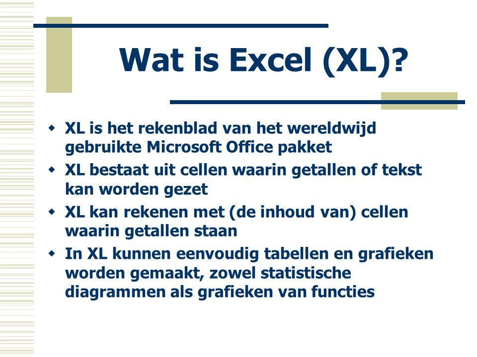 Wat is Excel (XL) XL is het rekenblad van het wereldwijd gebruikte Microsoft Office pakket.