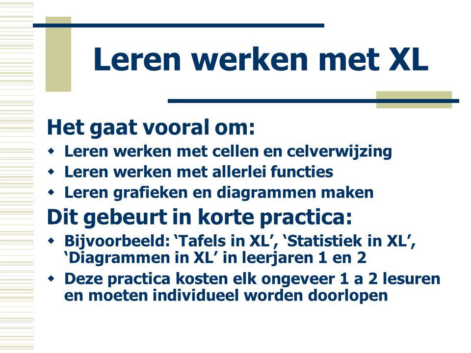 Leren werken met XL Het gaat vooral om: Dit gebeurt in korte practica: