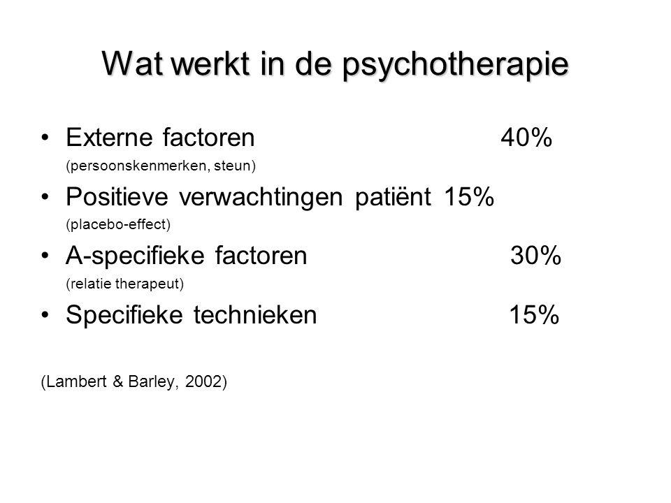 Wat werkt in de psychotherapie