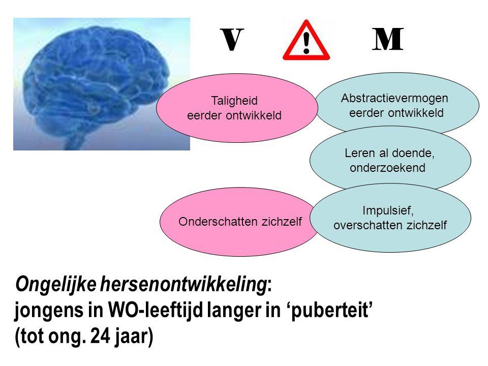V M. Taligheid eerder ontwikkeld. Abstractievermogen eerder ontwikkeld. Leren al doende, onderzoekend.