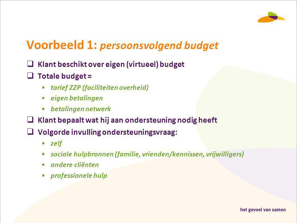Voorbeeld 1: persoonsvolgend budget