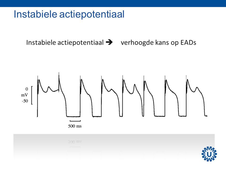 Instabiele actiepotentiaal  verhoogde kans op EADs