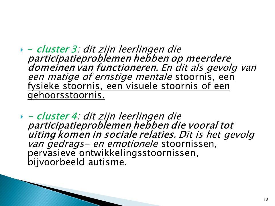 - cluster 3: dit zijn leerlingen die participatieproblemen hebben op meerdere domeinen van functioneren. En dit als gevolg van een matige of ernstige mentale stoornis, een fysieke stoornis, een visuele stoornis of een gehoorsstoornis.