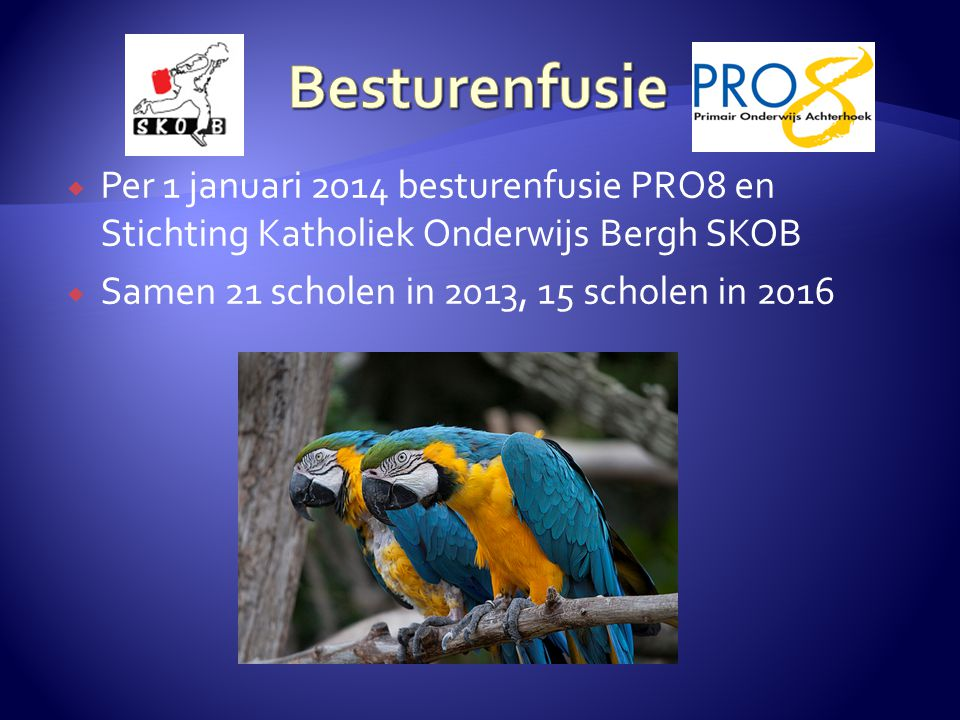 Besturenfusie Per 1 januari 2014 besturenfusie PRO8 en Stichting Katholiek Onderwijs Bergh SKOB.