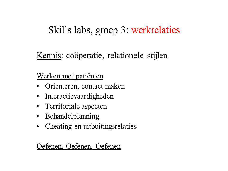 Skills labs, groep 3: werkrelaties