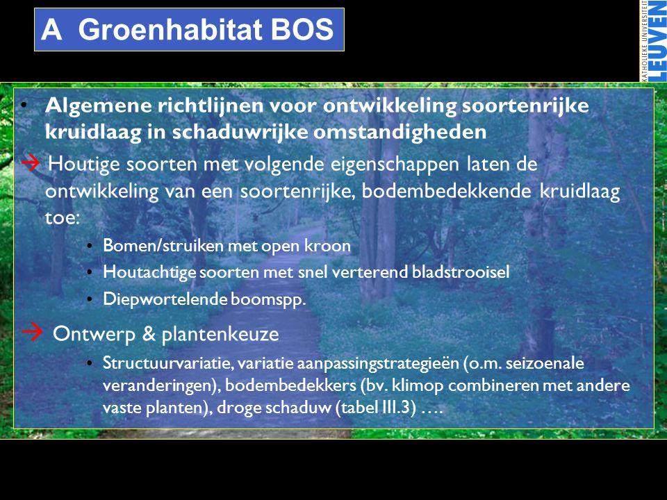 A Groenhabitat BOS  Ontwerp & plantenkeuze