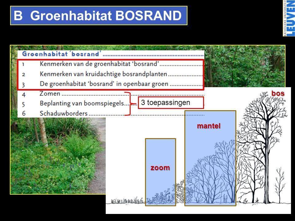B Groenhabitat BOSRAND