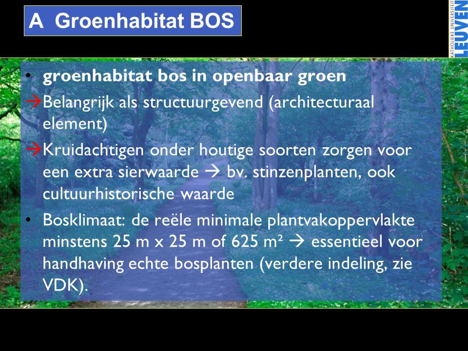 A Groenhabitat BOS groenhabitat bos in openbaar groen