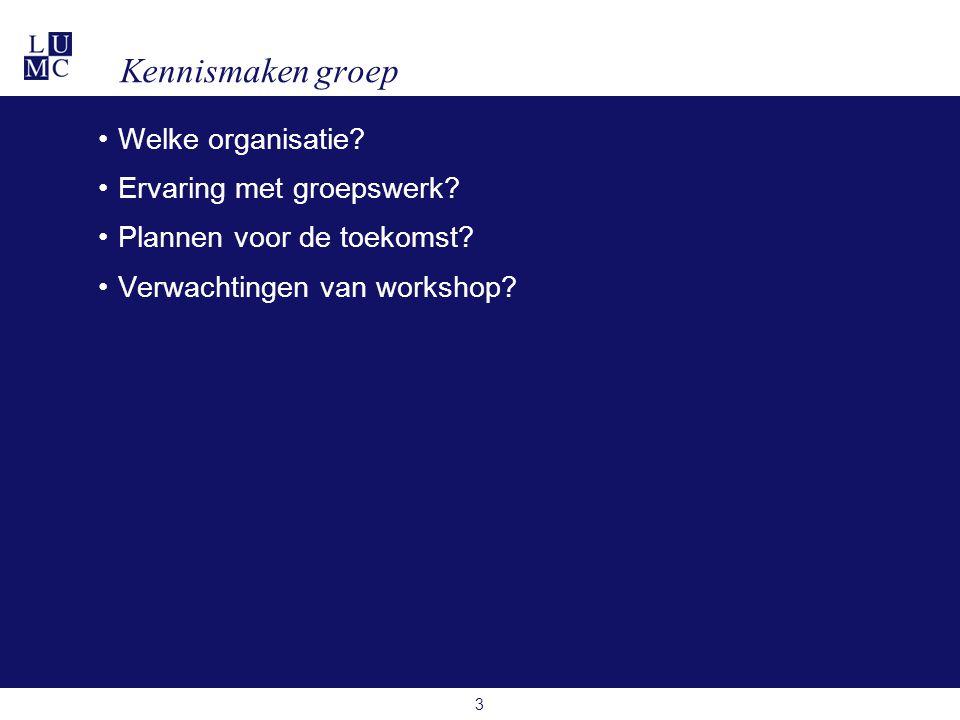 Kennismaken groep Welke organisatie Ervaring met groepswerk