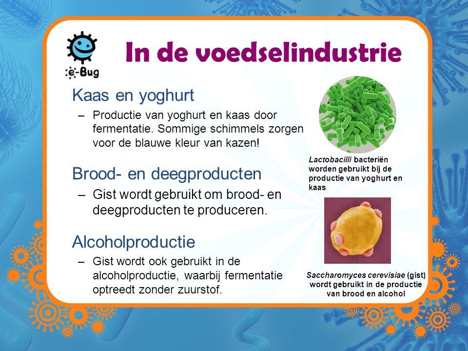 In de voedselindustrie
