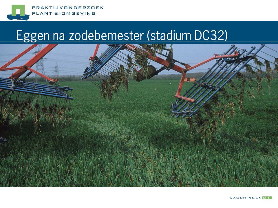 Eggen na zodebemester (stadium DC32)