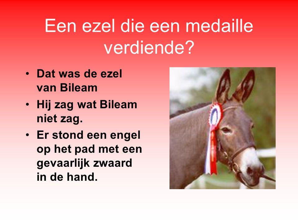 Een ezel die een medaille verdiende