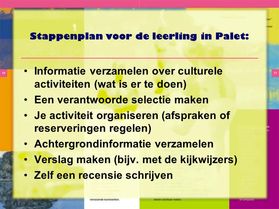 Stappenplan voor de leerling in Palet: