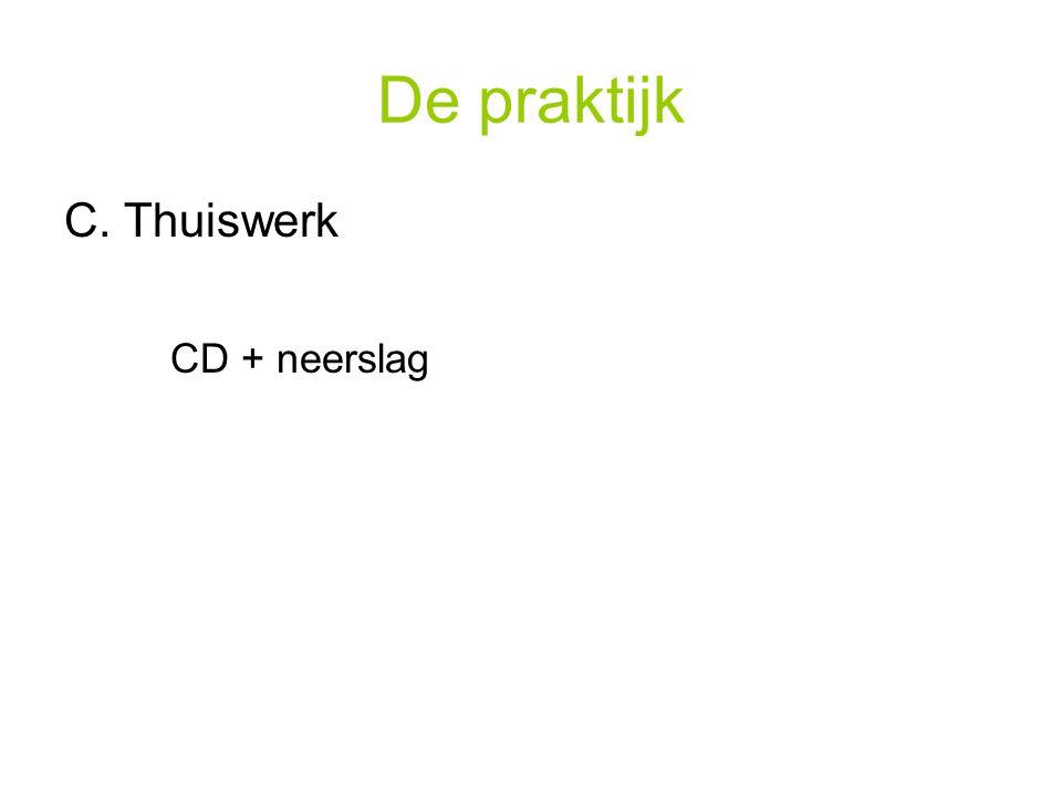 De praktijk C. Thuiswerk CD + neerslag