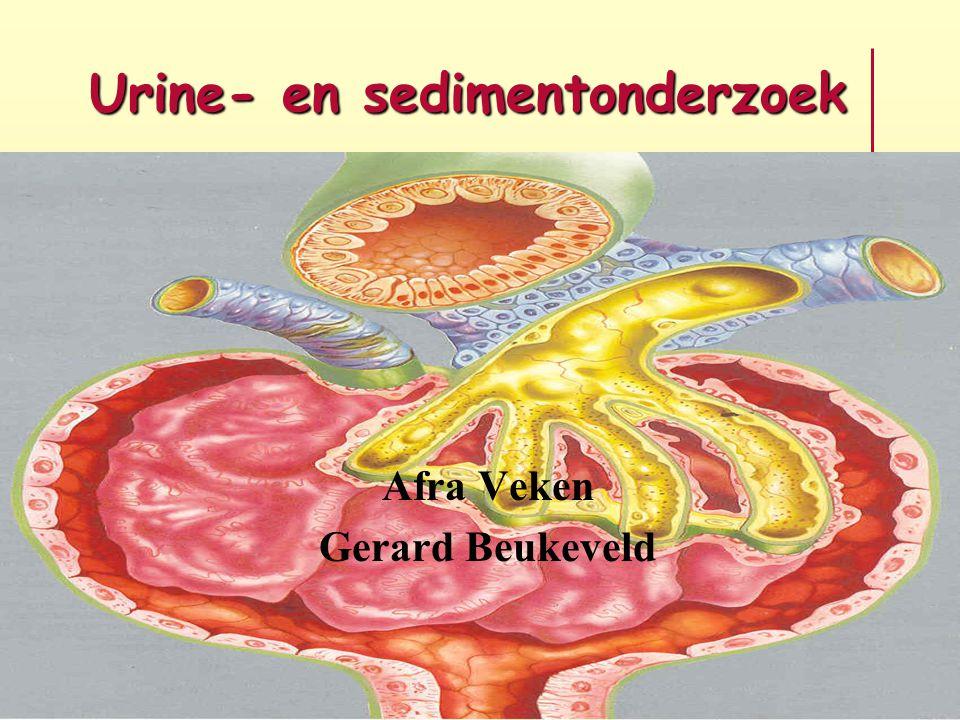 Urine- en sedimentonderzoek