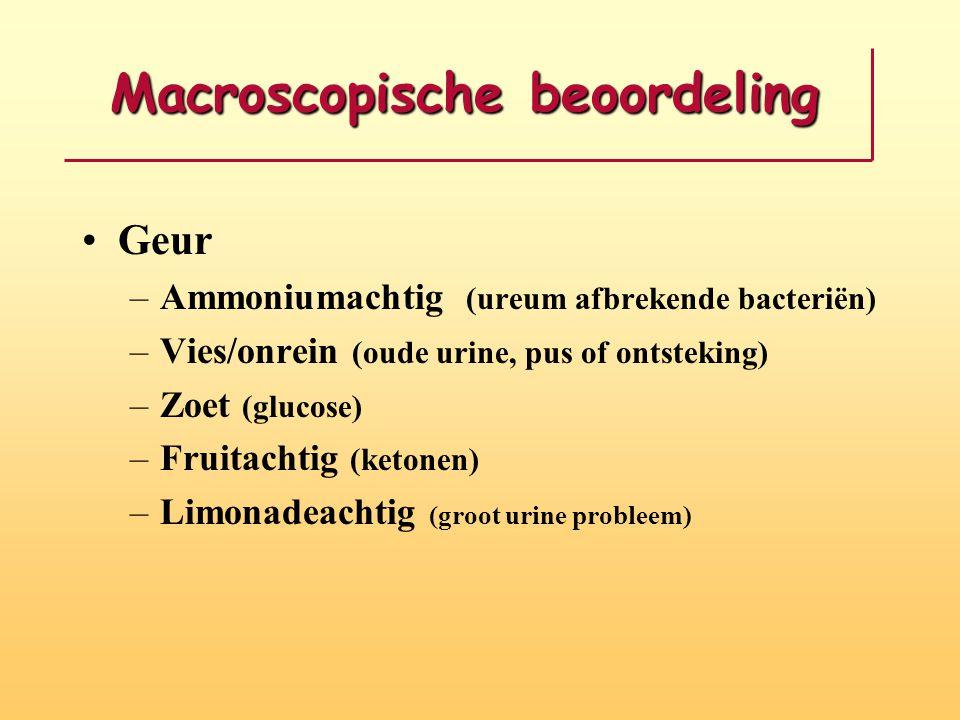 Macroscopische beoordeling