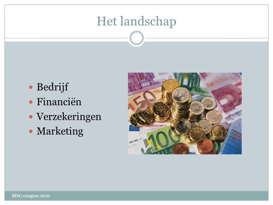 Het landschap Bedrijf Financiën Verzekeringen Marketing