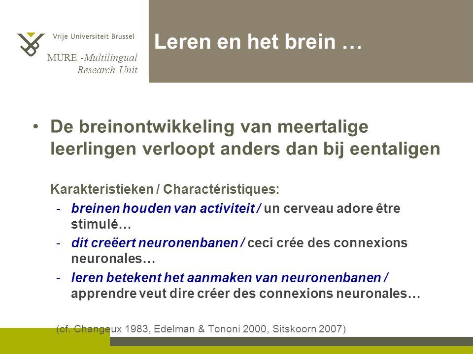 Leren en het brein … De breinontwikkeling van meertalige leerlingen verloopt anders dan bij eentaligen.