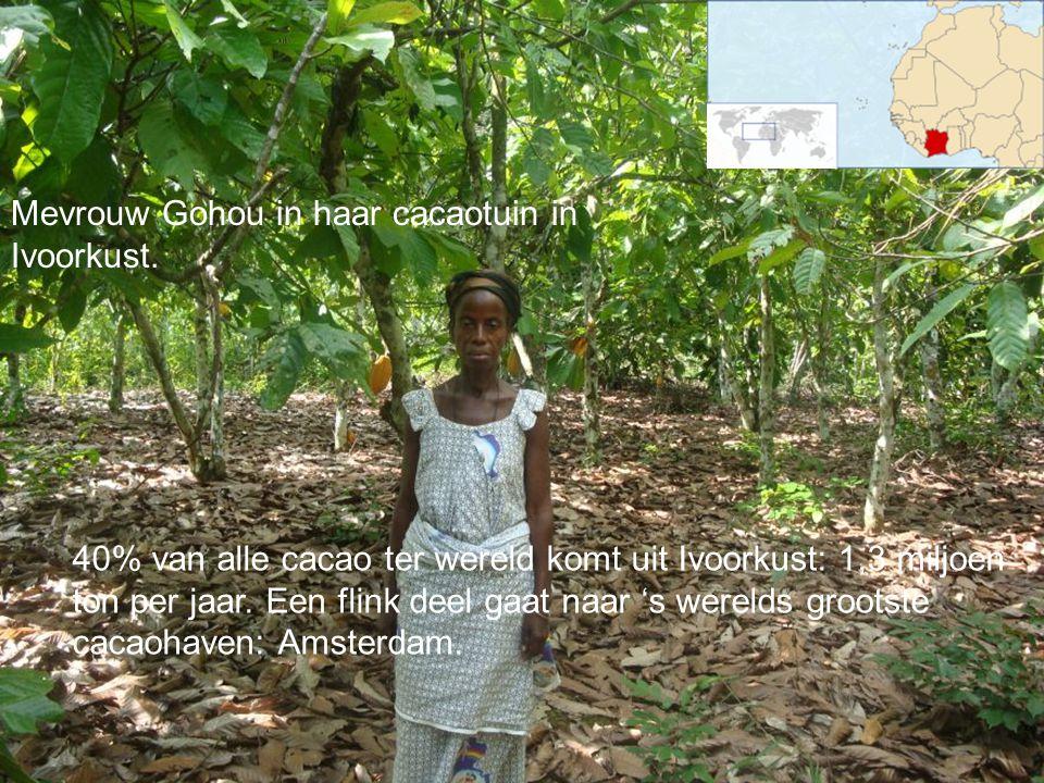 Mevrouw Gohou in haar cacaotuin in Ivoorkust.