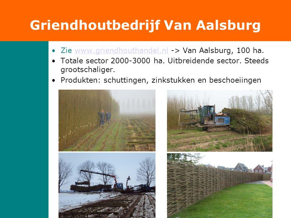 Griendhoutbedrijf Van Aalsburg