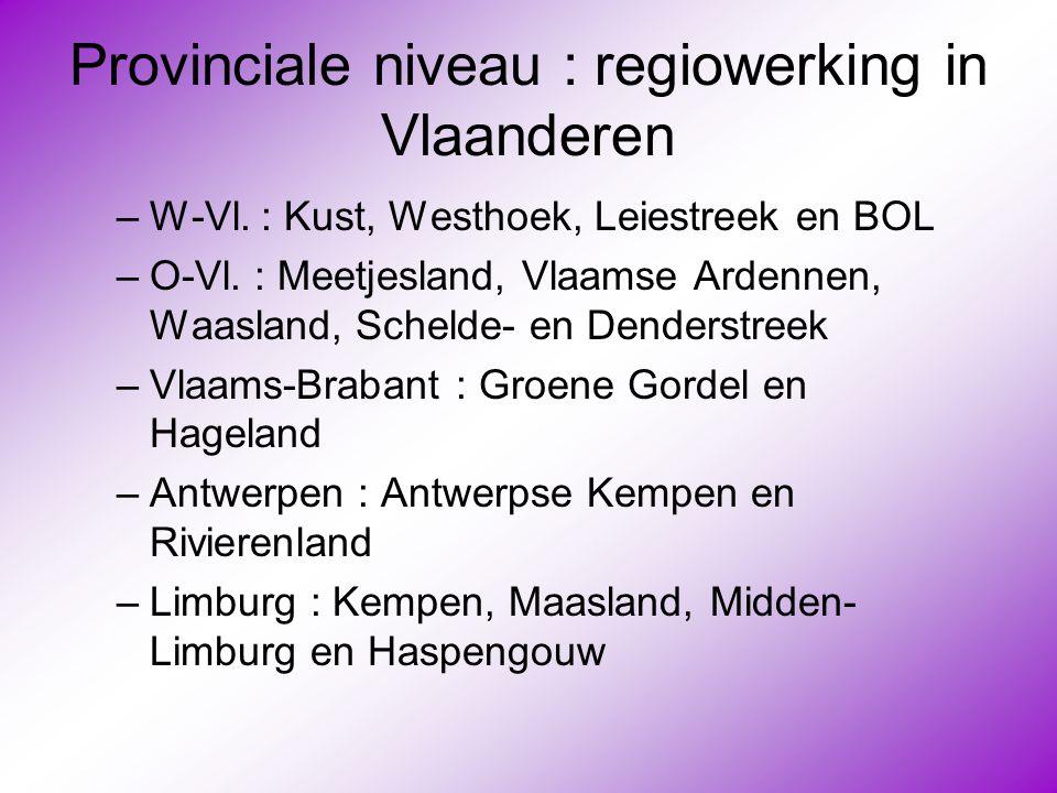 Provinciale niveau : regiowerking in Vlaanderen