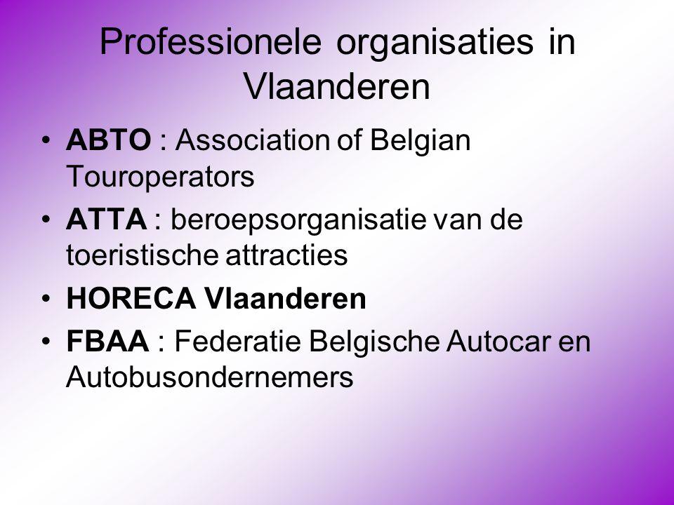 Professionele organisaties in Vlaanderen