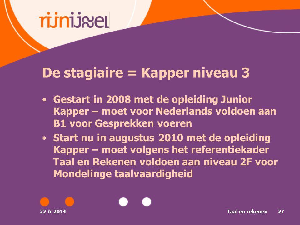 De stagiaire = Kapper niveau 3