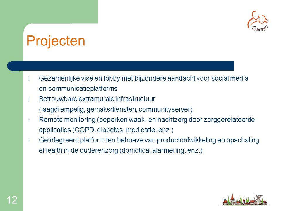 Projecten Gezamenlijke vise en lobby met bijzondere aandacht voor social media. en communicatieplatforms.