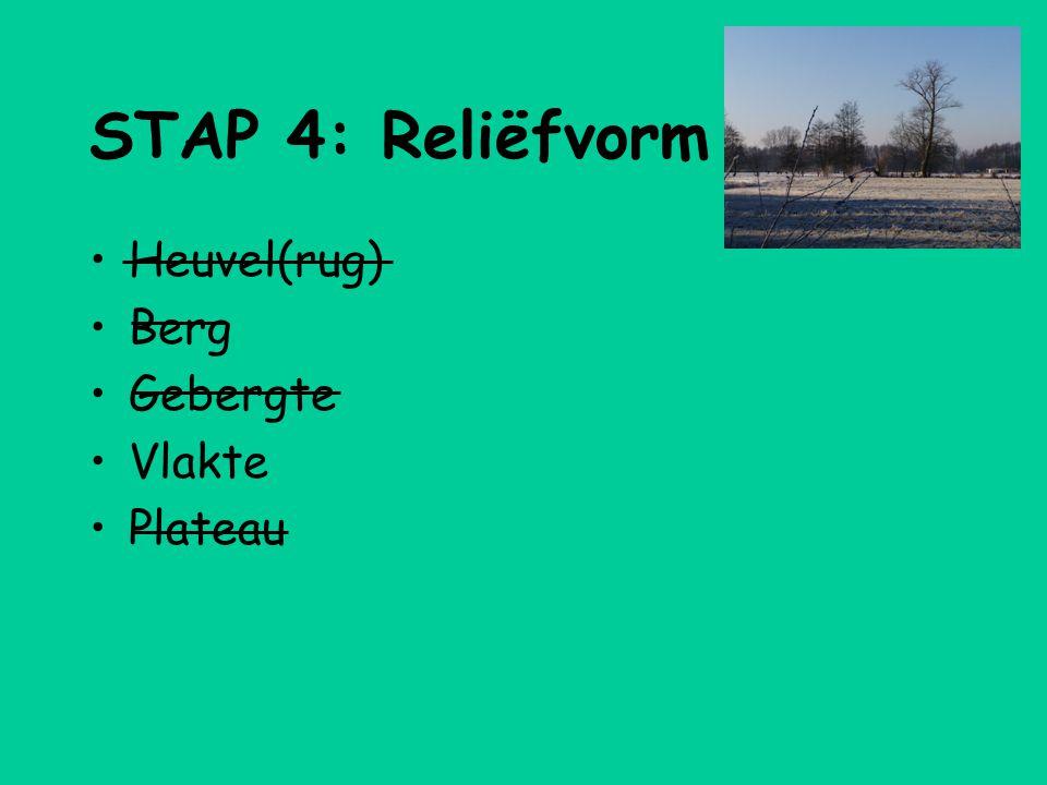 STAP 4: Reliëfvorm Heuvel(rug) Berg Gebergte Vlakte Plateau