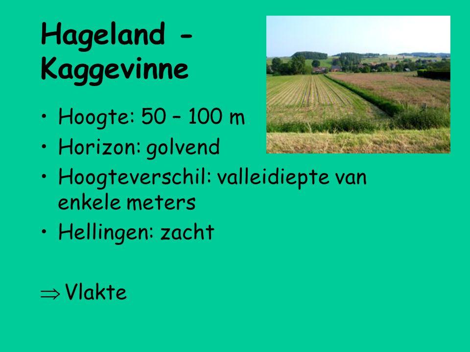 Hageland - Kaggevinne Hoogte: 50 – 100 m Horizon: golvend