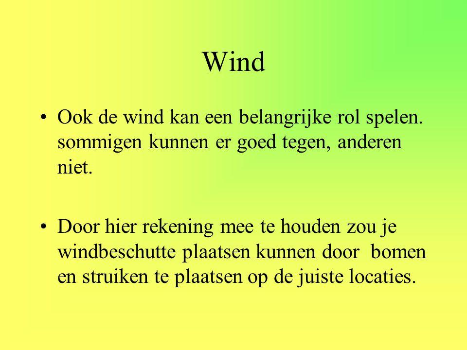 Wind Ook de wind kan een belangrijke rol spelen. sommigen kunnen er goed tegen, anderen niet.