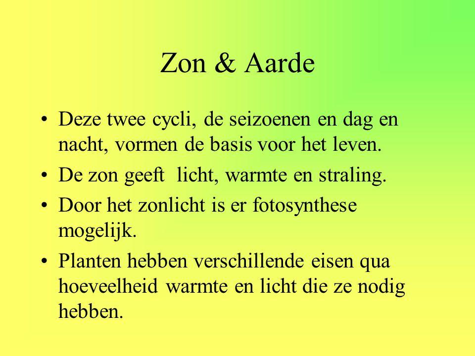 Zon & Aarde Deze twee cycli, de seizoenen en dag en nacht, vormen de basis voor het leven. De zon geeft licht, warmte en straling.