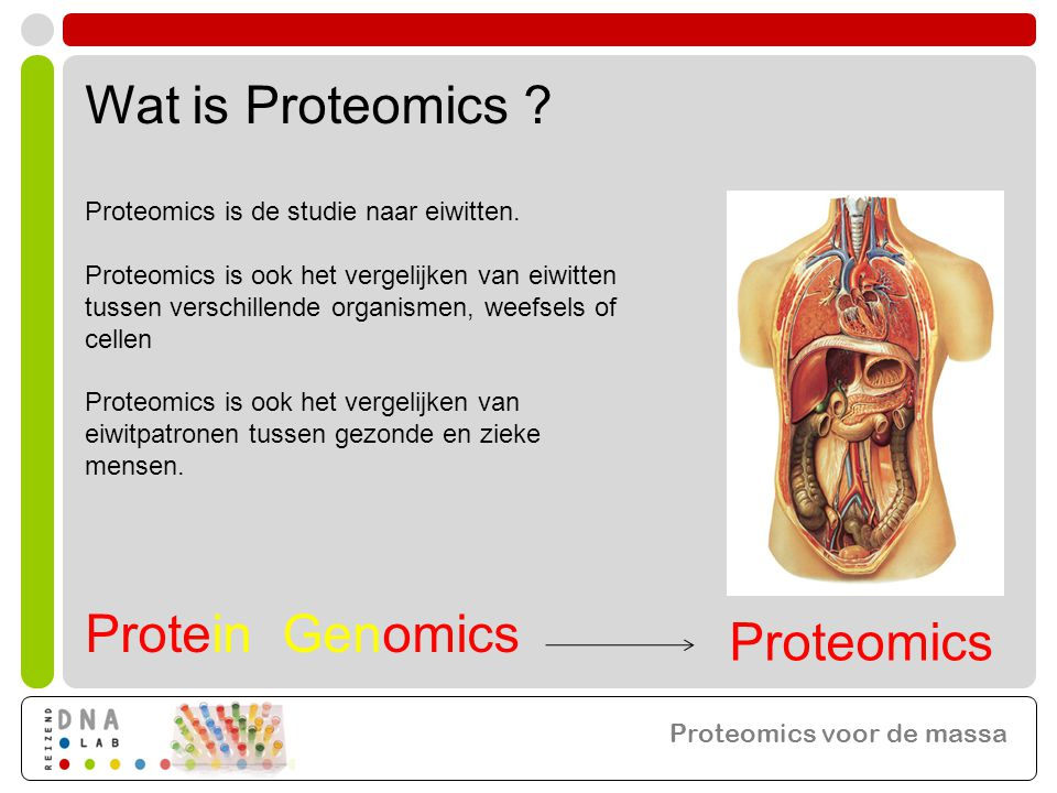 Proteomics voor de massa