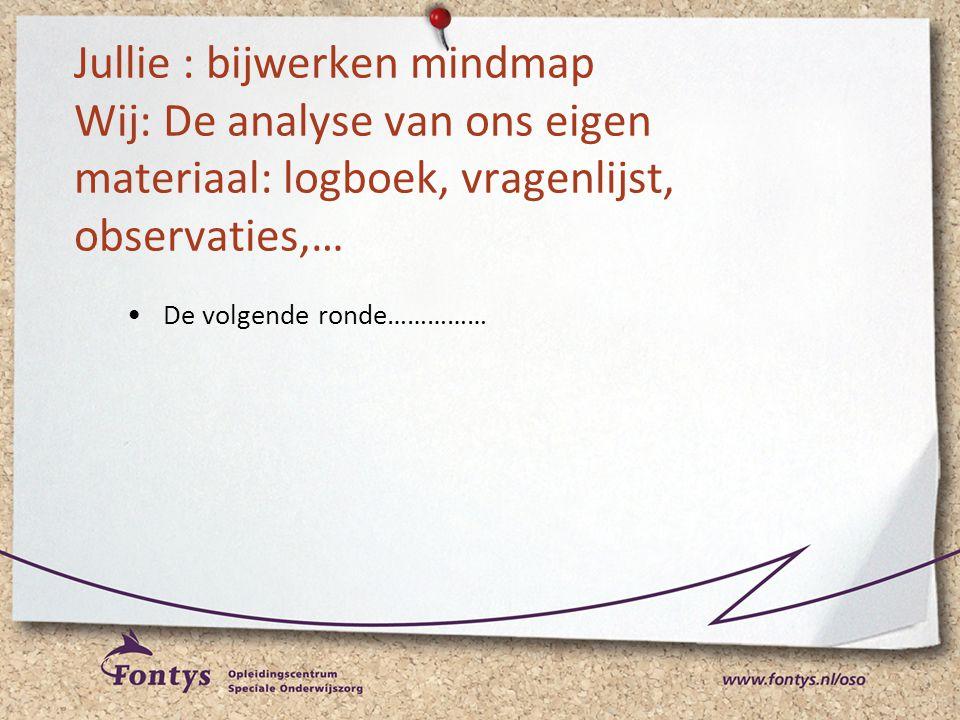 Jullie : bijwerken mindmap Wij: De analyse van ons eigen materiaal: logboek, vragenlijst, observaties,…