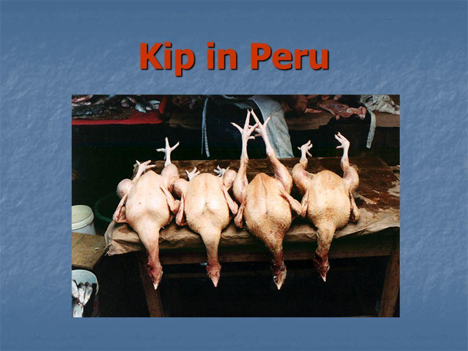 Kip in Peru