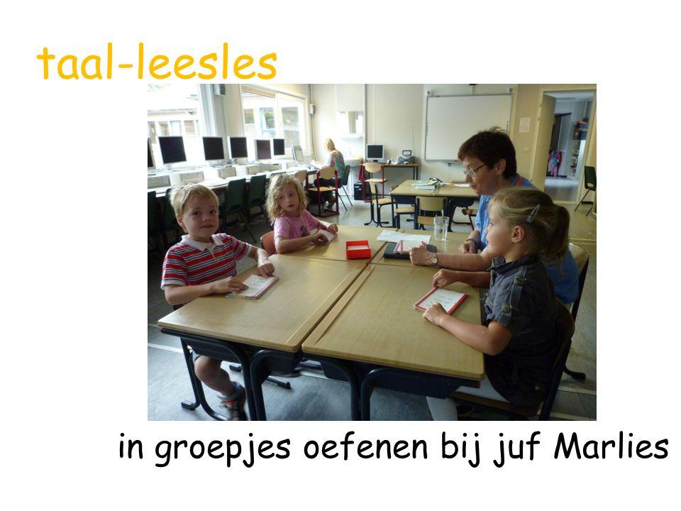 taal-leesles in groepjes oefenen bij juf Marlies