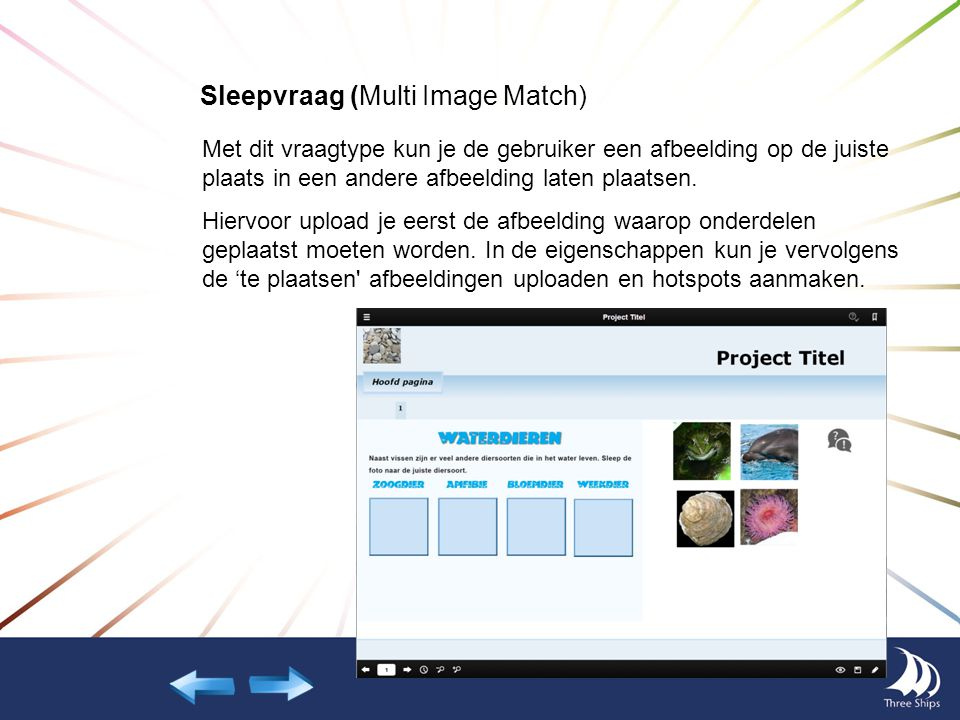 Sleepvraag (Multi Image Match)