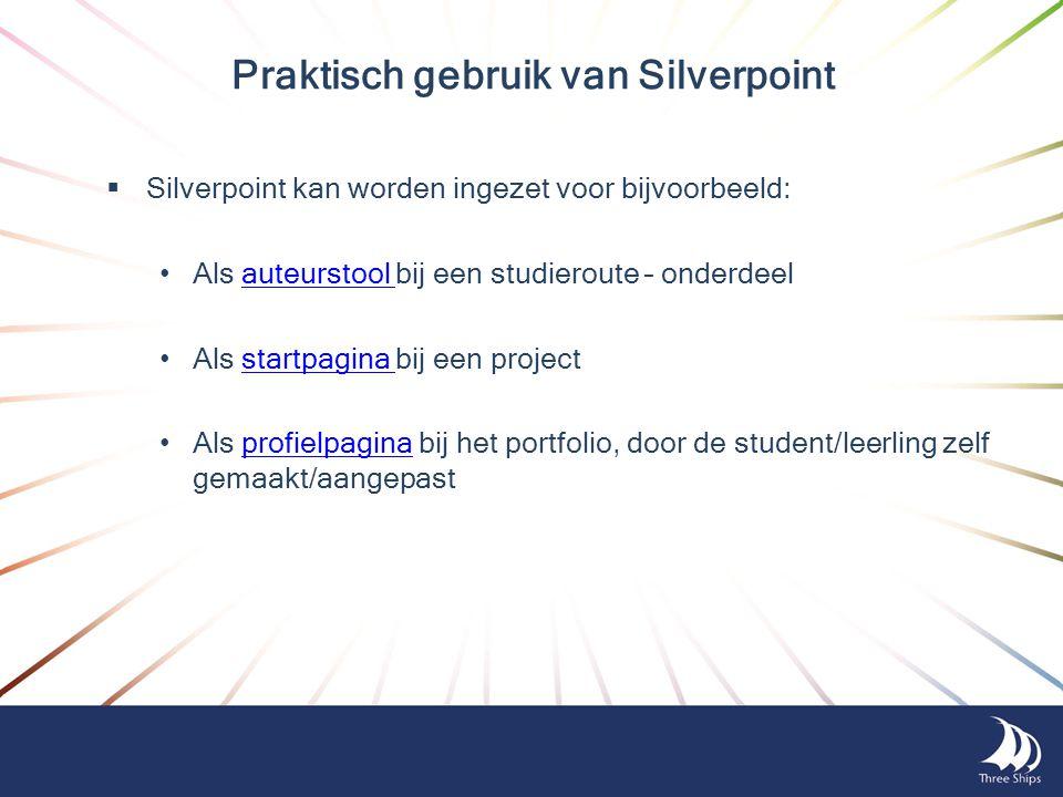 Praktisch gebruik van Silverpoint