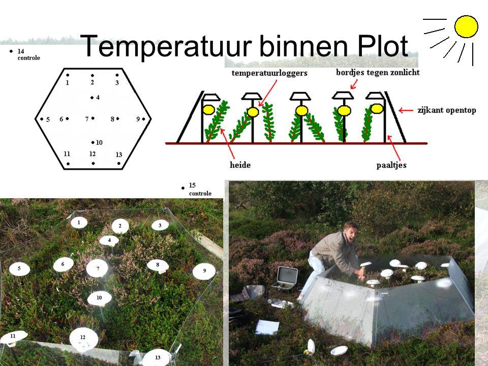 Temperatuur binnen Plot