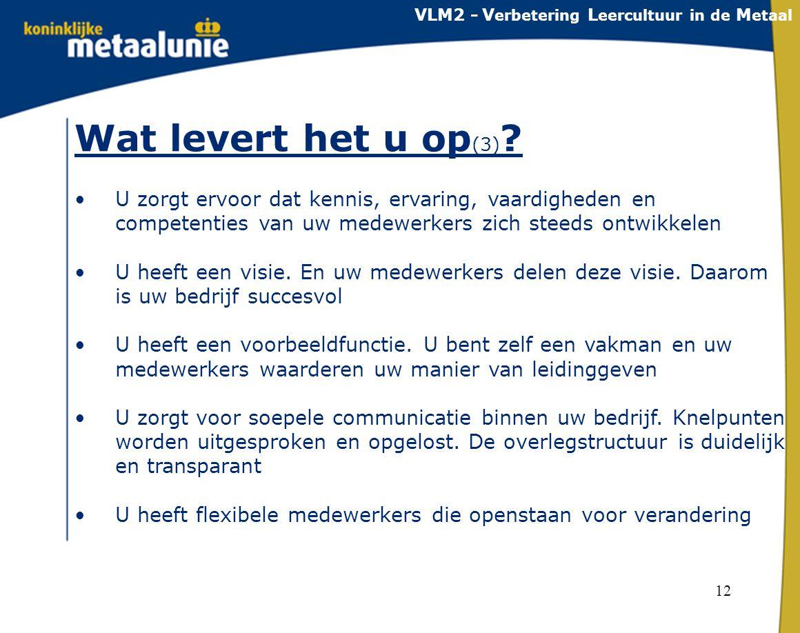 VLM2 - Verbetering Leercultuur in de Metaal