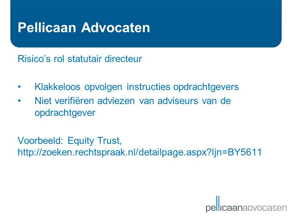 Pellicaan Advocaten Risico's rol statutair directeur