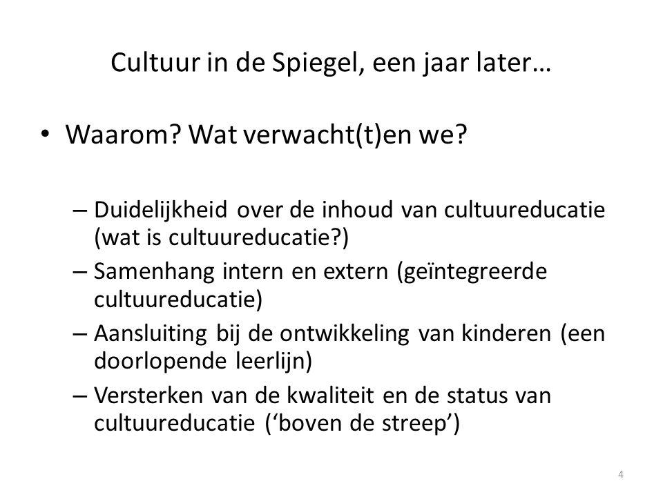 Cultuur in de Spiegel, een jaar later…