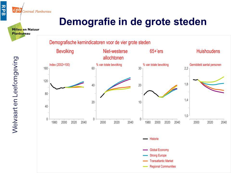 Demografie in de grote steden