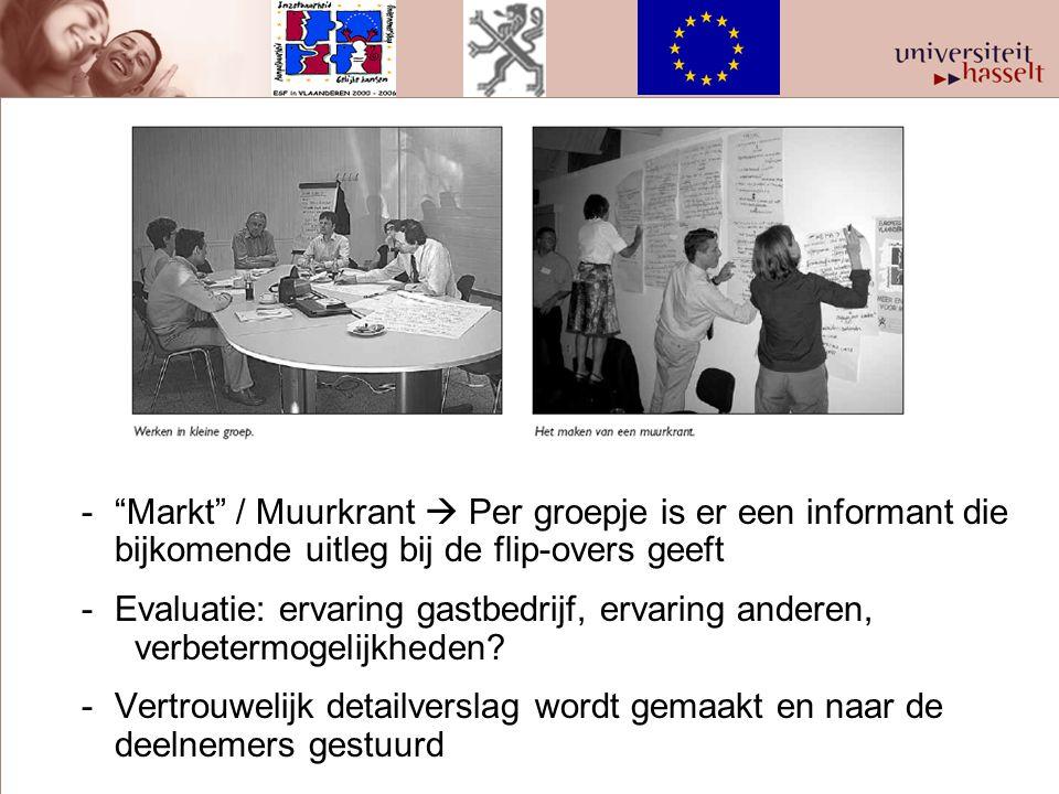 Markt / Muurkrant  Per groepje is er een informant die bijkomende uitleg bij de flip-overs geeft