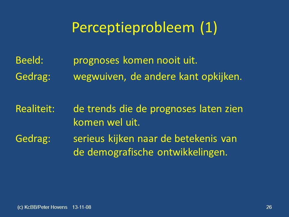 Perceptieprobleem (1)