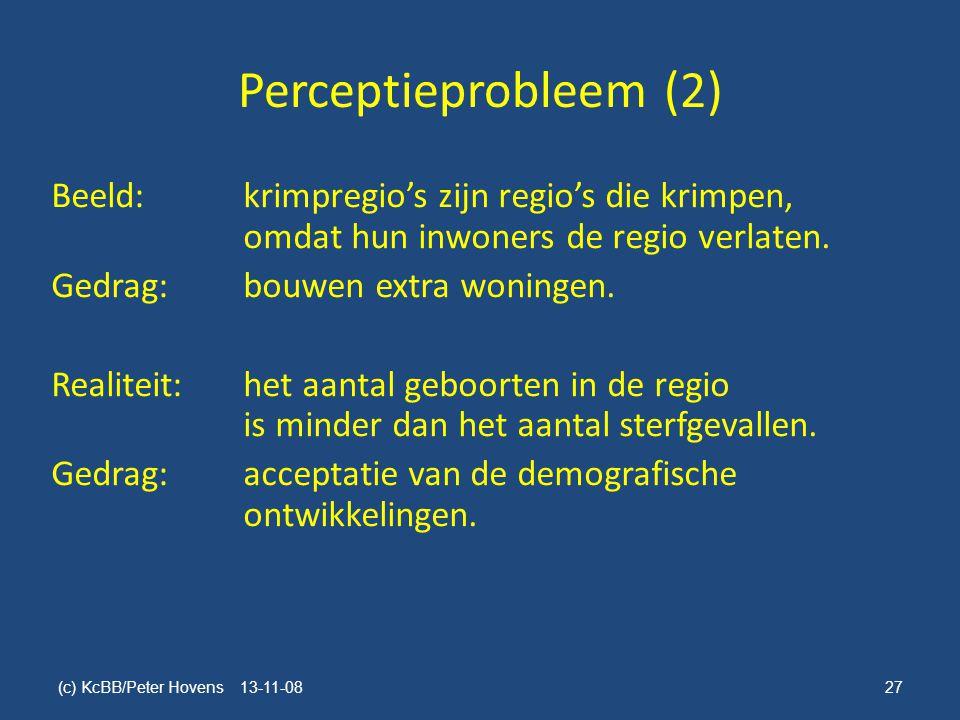 Perceptieprobleem (2)